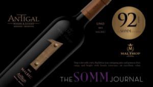 Rượu vang số 1 antigal argentina malbec 2013