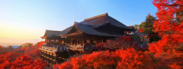 OSAKA - KYOTO - HAKONE - LAKE KAWAGUCHI   FUJI MOUNTAIN – TOKYO