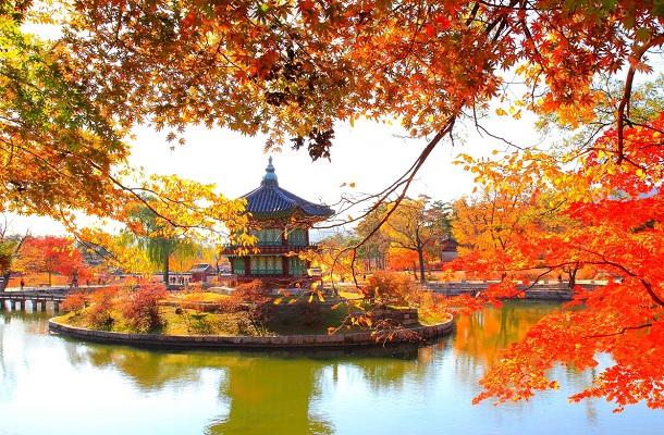 SEOUL – JEJU – NAMI – EVERLAND